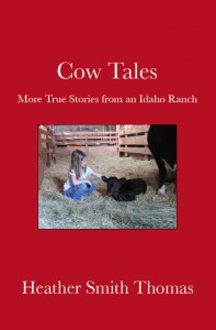 Cow Tales capture